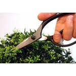 KST201 Bonsai scissors Okatsune 201: medium blade and protective stopper