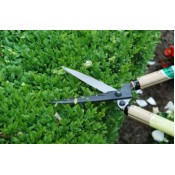 Shrub shears (3)